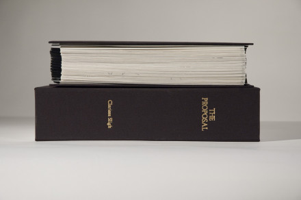 Photograph of Accordion Book Proposal on Box